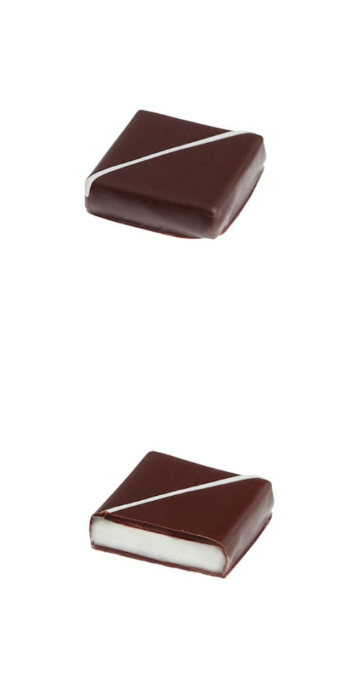 "<p><span class=""caption-name\"">Coco</span></p>